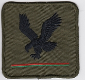 Army Air Corps AAC Rgt Patch 4 Regiment DZ Eagle 1980s