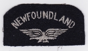 RAF Patch Nationality Title Newfoundland Eagle Facing Left Vols