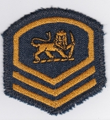 RhAF Patch Rank Rhodesian Air Force Master Sergeant Badge 2