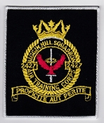 RAF Patch ATC Squadron 2427 Biggen Hill Sqn Air Training Corps