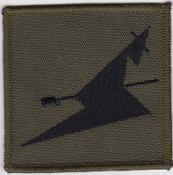 RAF Patch ATC Squadron 241 Wanstead Woodford Air Training Corps