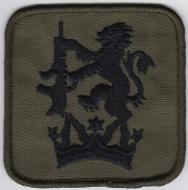 RAF Patch ATC Training SATT Scottish Small Arms Training Team