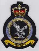 RAF AAC Patch Joint Special Forces Aviation Wing JSFAW Crest