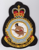RNZAF Patch Sqn Royal New Zealand Air Force 3 Squadron Crest