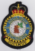 RCAF Patch Sqn Royal Canadian Air Force 405 Squadron Escadron