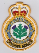 RCAF Patch ACWS Royal Canadian Air Force 21 Squadron Escadron