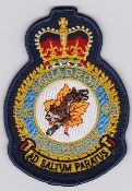 RCAF Patch Sqn Royal Canadian Air Force 416 Squadron Escadron