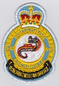 RCAF Patch Sqn Royal Canadian Air Force 442 Squadron Escadrille