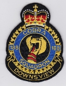 RCAFAC Patch Crest Royal Canadian Air Cadets 188 Squadron Cobra