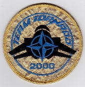 RAF Patch Royal Air Force TTTE Tri National Tornado Training TT