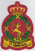 RNLAF Patch Sqn Royal Netherlands Air Force 314 Squadron Crest