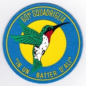Italian Patch Air Force Aeronautica Militare AM Sq 601 Utility