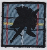 RAF Patch Royal Air Force 6 FP Force Protection Wing Leuchars Ta