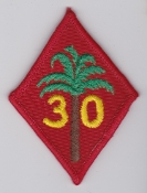 RAF Patch 30 Squadron Royal Air Force Palm Tree C 130 Hercules