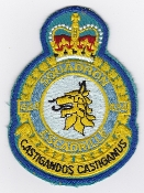 RCAF Patch Sqn Royal Canadian Air Force 424 Transport Rescue