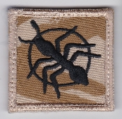 RAF Patch Airfield Engineering 5001 Squadron Afghanistan TRF