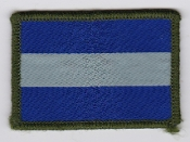Army Air Corps AAC Rgt Patch 2 Regiment AAC TRF