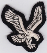 Army Air Corps AAC Patch Eagle Arm Facing Right