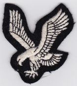 Army Air Corps AAC Patch Eagle Arm Facing Left