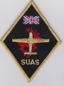 RAF University Air Squadron Patches