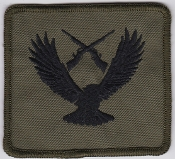 RAF Patch ATC Training SATT Small Arms Training Team