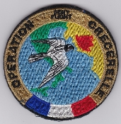 French Air Force ALA Op Patch Crecerelle Deny Flight 1993 Jaguar