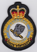 RCAF Patch Sqn Royal Canadian Air Force 436 Squadron Escadrille