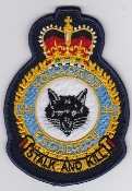 RCAF Patch Sqn Royal Canadian Air Force 441 Squadron Escadron