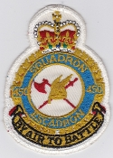 RCAF Patch Sqn Royal Canadian Air Force 450 Squadron Escadron