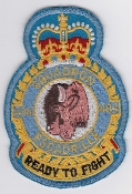 RCAF Patch Sqn Royal Canadian Air Force 404 Squadron Escadrille