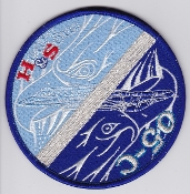 JASDF Patch Tng Japan Air Self Defence Force 05 C Heart & Soul