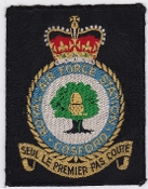 RAF Training School Patches