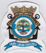 RNLNAS Patch Netherlands Naval Aviation 320 Squadron Crest P 3