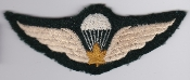 Canadian Airborne Patch Parachute Qualification Wing 2 WWII
