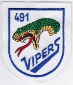German Air Force Patch 49 Jabog Alpha Jet 491 Staffel Vipers c