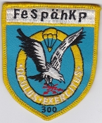German Army Airborne Patch Fallschirmjager Fernspahkompanie 300