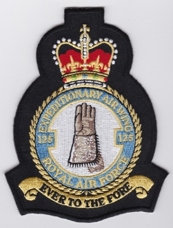 RAF Patch Royal Air Force 125 EAW Expeditionary Air Wing Cres EB