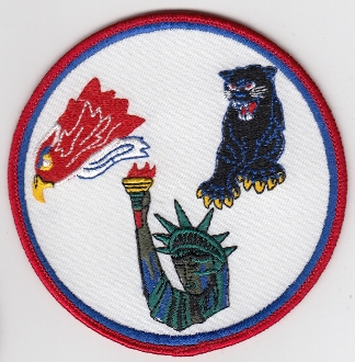 USAF Patch Fighter USAFE 48 u FW Ftr Wing F 15E Sqn Gaggle b