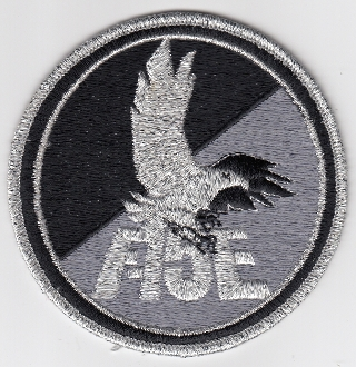 USAF Patch Fighter 461 TFTS Tac Ftr Training Squadron F 15E b