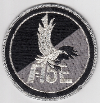 USAF Patch Fighter USAFE 48 u FW Ftr Wing F 15E Qualified