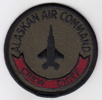 USAF Patch Fighter 21 TFW Tactical Ftr Wing F 15 Eagle AMS CC